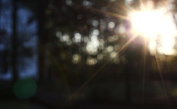 Sunlight by Emillemily