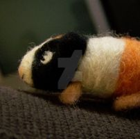 Needle felted Guinea Pig by manGoavocaDo