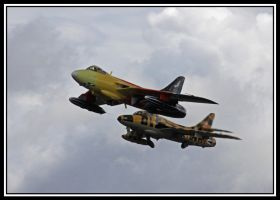 Miss Demeanor And Tiger by lizzyr