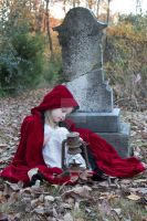 Little red riding hood Premium Stock 4 by HigherSeeking