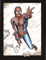 Spidey 102209 by ChrisMcJunkin