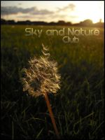 Sky and Nature Club ID by switch-sgfx