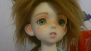 Skit bjd faceup by roguelioness