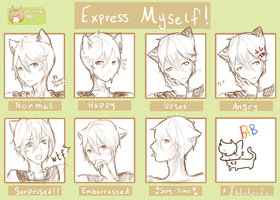Expression Meme :KT: by HokiMaru