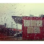 Rainy moods. by incredi