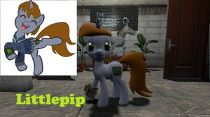 Littlepip Hex (updated model) by headhunter100060