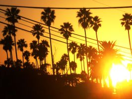 West L.A. afternoon sunset by RedeyeTrickmaster
