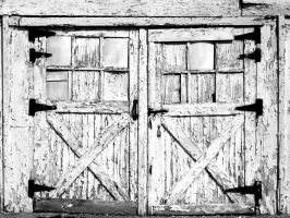 Old Doors by RaySark