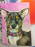Iron Artist Challenge ACEO 10 by nightspiritwing