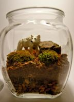 Moss Terrarium with White Wolf by botaninko