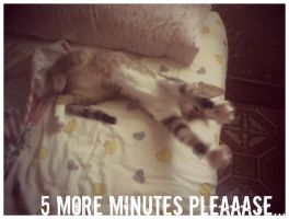 5 more minutes pleaaase by SpottedpeIt