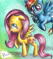 Fluttershy and Rainbow Dash by FuriarossaAndMimma