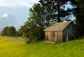 Cottage in the countryside by odina222