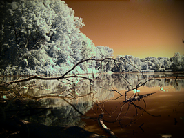 IR Lake by electricjonny