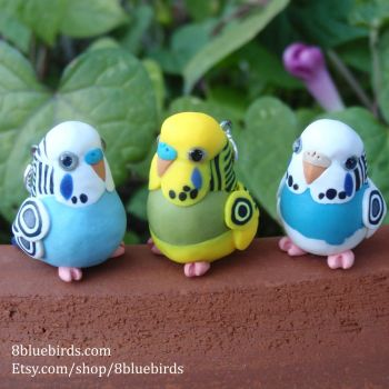 Little Budgie Flock (Comm) by The-Wandering-Bird