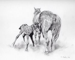 Mare and Foal by Utlah
