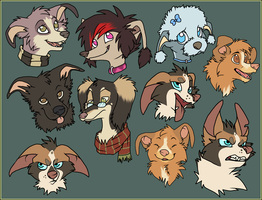 k9 Headshots by Captain-Squeak