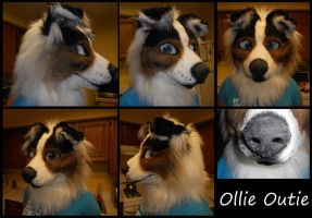 Ollie Outie Collie by Sharpe19
