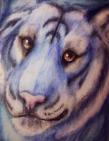 Enaxn  ACEO by cottondragon