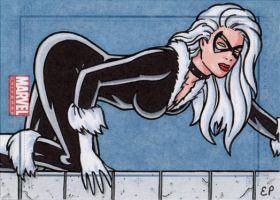 Black Cat MU by ElainePerna
