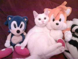 Sonic , Tails and ... Chanelle by funkyjeremi