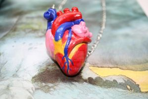 Anatomical Heart Necklace by BunnyStorm