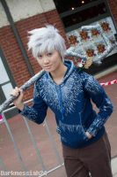 Jack Frost by MFM-Photography