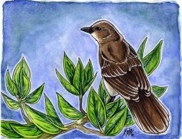 Mockingbird Watercolor by Kata