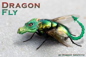 Dragon Fly by AskGriff
