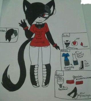 Eclipse's full ref sheet by Eclipsethecat4