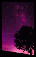 Night Tree by myINQI