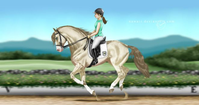 The Extended Canter [comm] by Nawaii