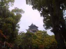Hiroshima Castle by Lianthanis