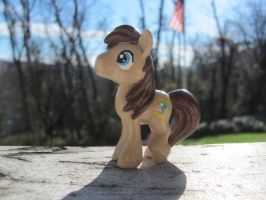 Custom Dr Whooves by DudeWheresMyLion