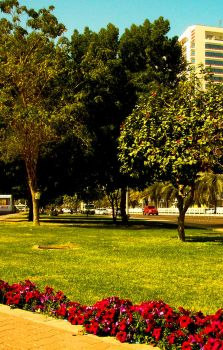 the tranquility by bilaljalil