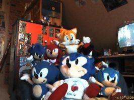 mah Sonic plushies :3 by LeniProduction