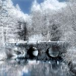 Infrared bridge by WrappedUpInBooks
