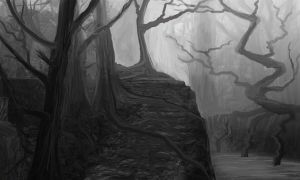 dead forest path by Shane-D-Solomon