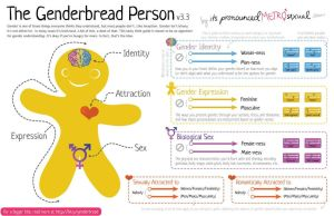 The Genderbread Person, a guide to self-identity by Feminine-Desires
