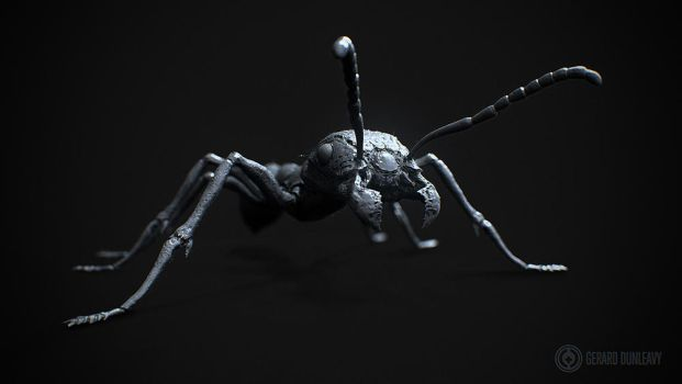 Bullet Ant by Capital---G