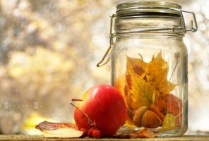 Pickled Autumn by Nightbless