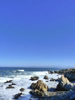 Pacific Grove, CA S3 by nyann
