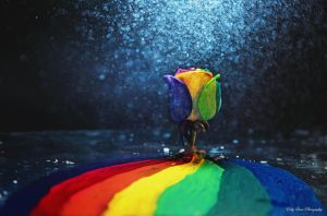 In Rainbows II by MyLifeThroughTheLens