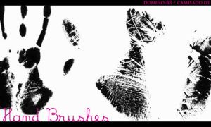 .5 - hand brushes by domino-88