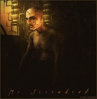 Mr Screwhead by Plassgard