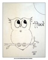 Hoot by kaleidoscopeeyes06