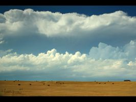 High Plains Chasing by FramedByNature