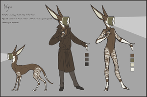 nym reference sheet by Acrosanti