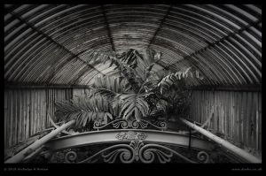 ID539 Palm House by Deviant-Darkr