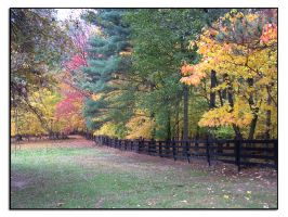 Tree line by docx